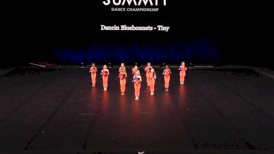 Dancin Bluebonnets - Tiny [2021 Tiny Pom Finals] 2021 The Dance Summit
