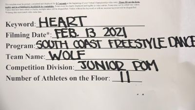South Coast Freestyle [Junior - Pom] 2021 NCA & NDA Virtual February Championship