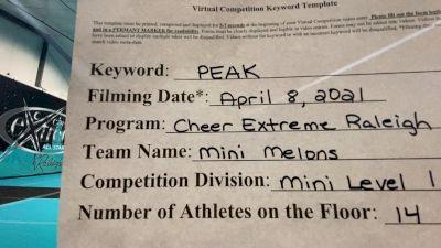 Cheer Extreme ‐ Raleigh - Mini Melons [L1 Mini] 2021 The Regional Summit Virtual Championships