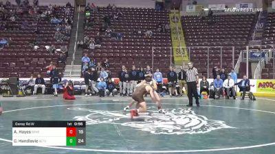 145 lbs Consolation - Aidan Hayes, Seneca Valley Hs vs Cole Handlovic, Bethlehem Catholic Hs