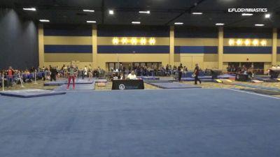 Alora McEwen - Vault, Anchorage Gymnastics - 2019 Brestyan's Las Vegas Invitational