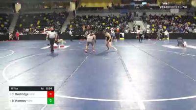 197 lbs Quarterfinal - Cody Baldridge, North Central College vs Braden Homsey, Ferrum College