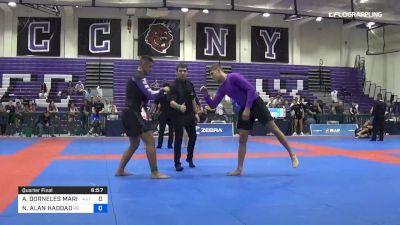 ARTHUR DORNELES MARIATH vs NATHAN ALAN HADDAD 2019 Pan IBJJF Jiu-Jitsu No-Gi Championship
