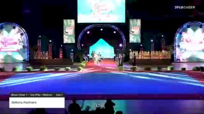 Deltona Panthers [2020 Show Cheer 1 - Tiny Mite - Medium Day 1] 2020 Pop Warner National Cheer & Dance Championship