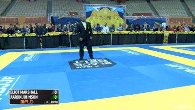 Eliot Marshall vs Aaron Johnson 2016 IBJJF No-Gi World Championships