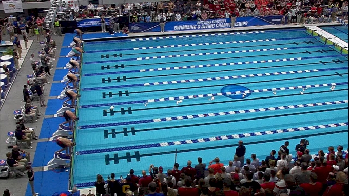 Men's NCAA Champs: 100 Freestyle