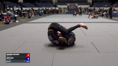 Brandon Walensky vs Ricky Lule ADCC North American Trials 2017
