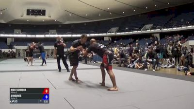 Nick Schrock vs Jj Holmes ADCC North American Trials 2017