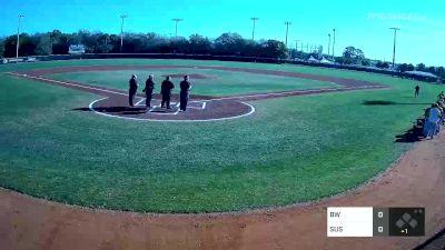 Susquehanna vs. Baldwin Wallace - 2020 Snowbird Baseball