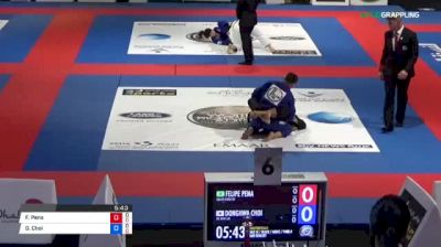 Felipe Pena vs Donghwa Choi J 2018 Abu Dhabi World Professional Jiu-Jitsu Championship