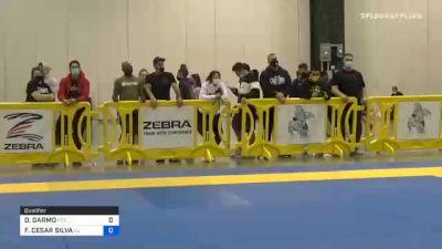 DAVID GARMO vs FELIPE CESAR SILVA 2020 IBJJF Pan No-Gi Championship