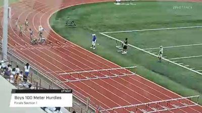 Youth Boys' 100m Hurdles, Finals 1 - Age 13