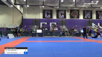 Austin Lee Yalowitz vs Ian Cole Weingaer.... 2019 Pan IBJJF Jiu-Jitsu No-Gi Championship