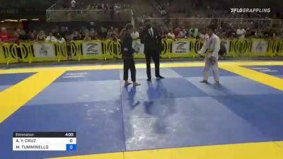 ANDY Y. CRUZ vs MARCELLO TUMMINELLO 2021 Pan Kids Jiu-Jitsu IBJJF Championship