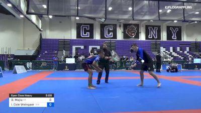 Dominic Mejia vs Ian Cole Weingaer 2019 Pan IBJJF Jiu-Jitsu No-Gi Championship