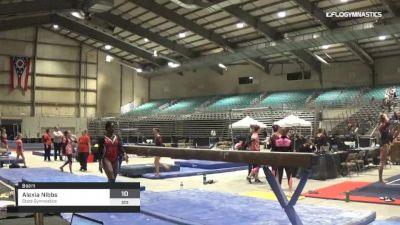 Alexia Nibbs - Beam, Stars Gymnastics - 2019 Buckeye Classic