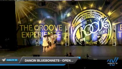 Dancin Bluebonnets - Open Contemporary [2019 Open Open / Open Lyrical Day 1] 2019 Encore Championships Houston D1 D2