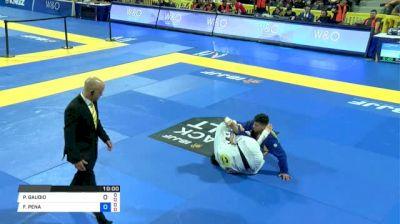 FELIPE PENA vs PATRICK GAUDIO 2018 World IBJJF Jiu-Jitsu Championship