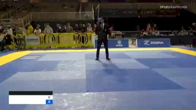 RENATO DOS SANTOS TAGLIARI vs AUSTIN WADE AVERA 2020 Pan Jiu-Jitsu IBJJF Championship