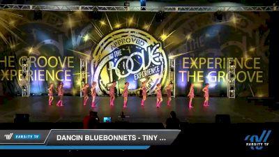 Dancin Bluebonnets - Tiny Jazz [2019 Tiny - Jazz Day 2] 2019 Encore Championships Houston D1 D2