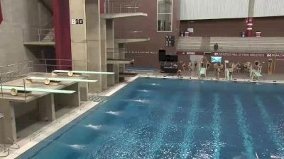 2018 Texas A&M and Louisville at Ohio State | Big Ten Mens Dive