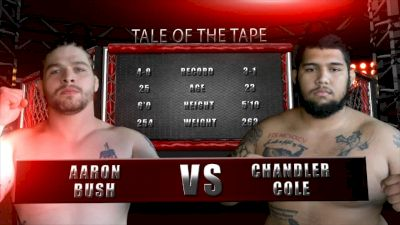 Chandler Cole vs. Aaron Bush - Valor Fights 51 Replay