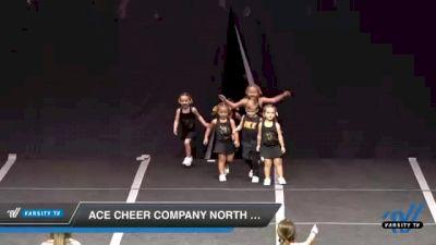 ACE Cheer Company North MS - Little Feathers [2020 L1 Tiny Small Coed Novice] 2020 ACE Cheer Company Showcase