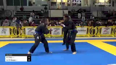 Robert Chiu vs Alejandro Rodriguez-Reyes 2020 American National IBJJF Jiu-Jitsu Championship