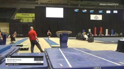 David Dortmund - Vault, Northern Illinois - 2021 Men's Collegiate GymACT Championships
