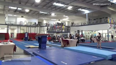 Chandler Mitchell - Vault, Kurt Thomas Gymn - 2021 Region 3 Women's Championships