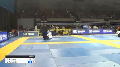 Karen Antunes vs Aarae Alexander 2019 Pan Jiu-Jitsu IBJJF Championship