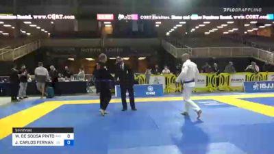 WENDERSON DE SOUSA PINTO vs JOÃO CARLOS FERNANDES DE FREITAS 2020 World Master IBJJF Jiu-Jitsu Championship