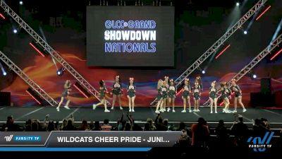 Wildcats Cheer Pride - Jr Jags [2020 L1 Junior Day 2] 2020 GLCC: The Showdown Grand Nationals