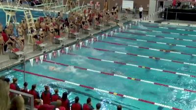 2018 Texas A&M and Louisville at Ohio State | Big Ten Mens Swimming