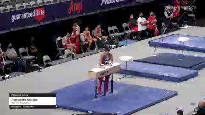 Alexandru Nitache - Pommel Horse, GymTek Academy - 2021 US Championships