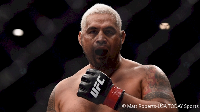 picture of Mark Hunt