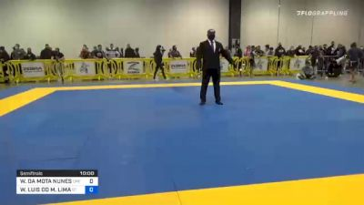 WILLIS DA MOTA NUNES vs WASHINGTON LUIS DO M. LIMA 2020 IBJJF Pan No-Gi Championship