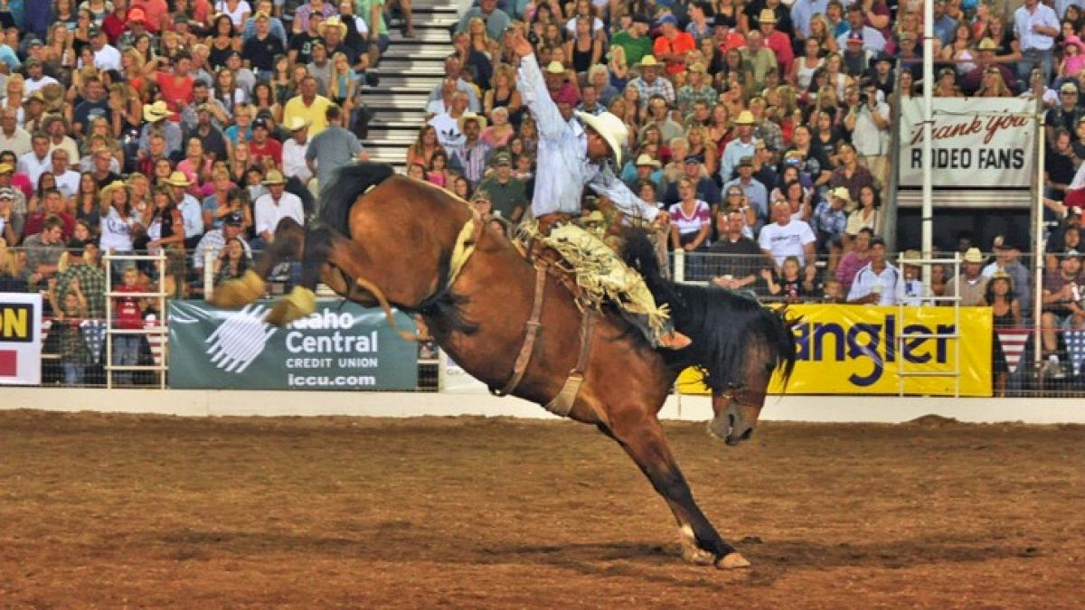 Nfr Calendar.5 Can T Miss Rodeos To Begin The 2018 Season