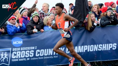 NCAA XC: The Hardest Race To Win