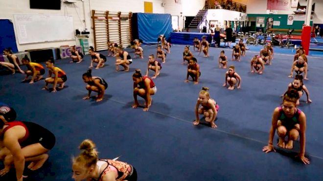 Desert Lights Gymnastics