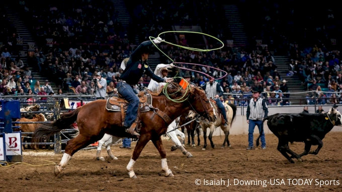 picture of 2019 National Western Stock Show & Rodeo: Denver