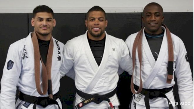 The New Black, Brown & Purple Belts Promoted After 2019 IBJJF Worlds
