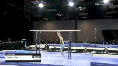 Cameron Bock - Parallel Bars, U of Michigan - 2021 Winter Cup & Elite Team Cup
