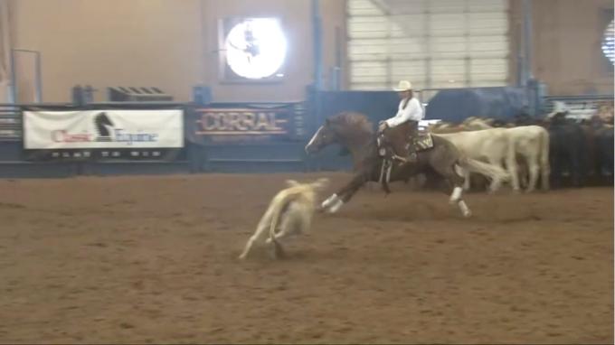 NHSRA Texas | June 14 | Cutting Championship