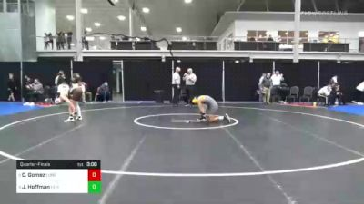 149 lbs Quarterfinal - Chris Gomez, Long Island U vs Jimmy Hoffman, Lehigh