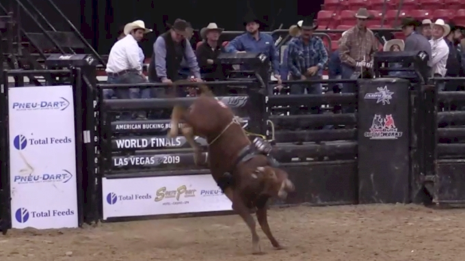 ABBI World Finals Futurity | Day Four