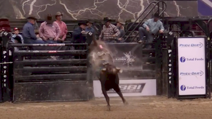 ABBI World Finals Futurity | Day Three