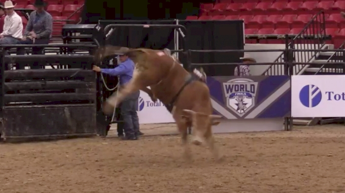 ABBI World Finals Futurity | Day Two