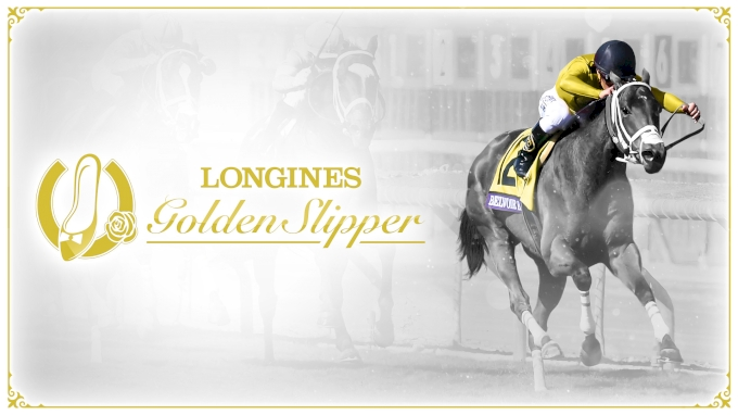 picture of 2020 Golden Slipper