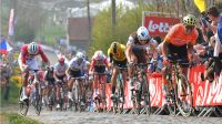 Get Ready For The Flanders Classics